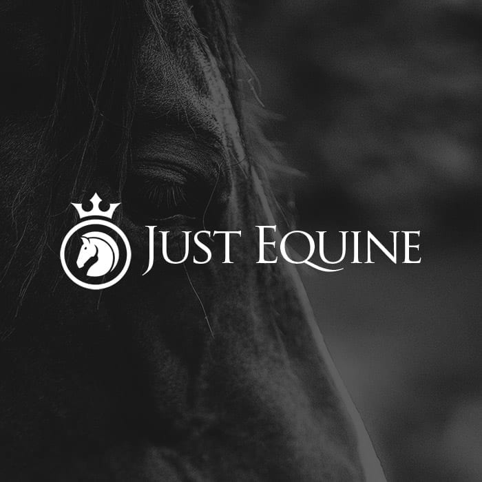 systemyzed-case-study-thumbnail-just-equine-logo